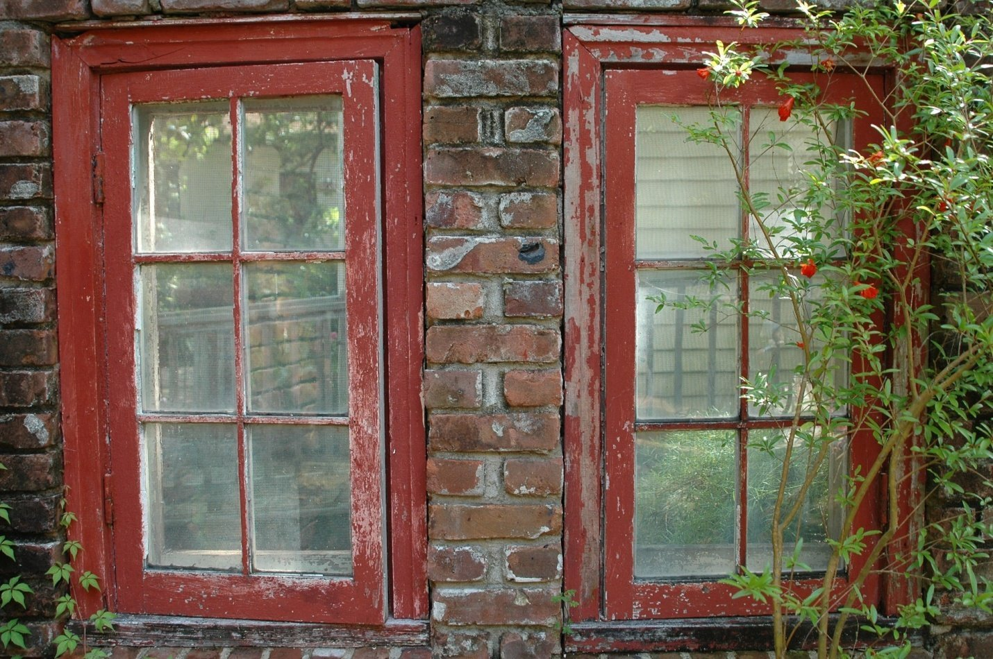 old sash windows